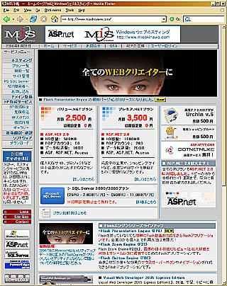 MIS沖縄 ウェブサイト